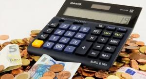 Nowelizacja budżetu lekkim wsparciem dla złotego