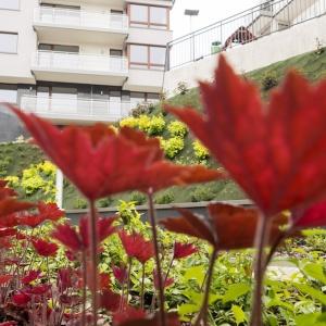 Gotowe mieszkania w Rezydencji Redłowo