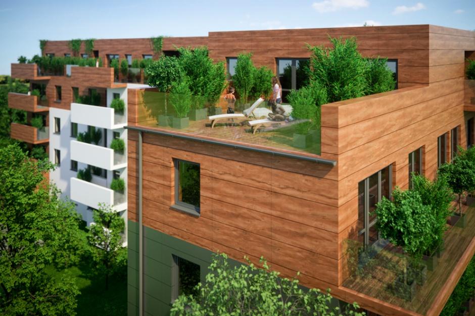 Apartamenty Gołębia 33 pną się w górę