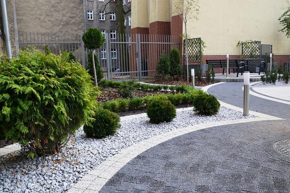 Szczecin dba o zieleńce przed kamienicami