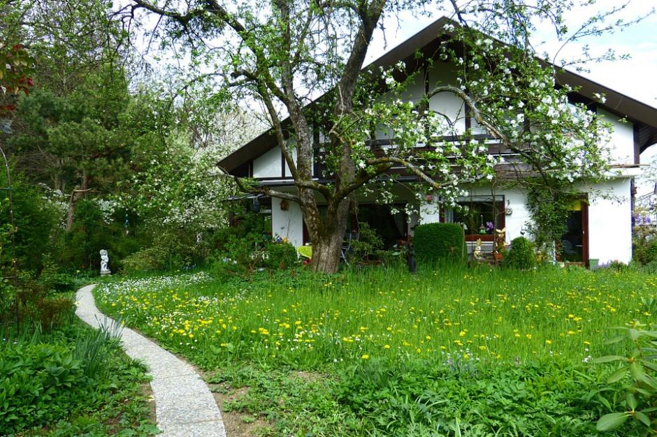 Lubin sprzedaje grunty pod domy jednorodzinne
