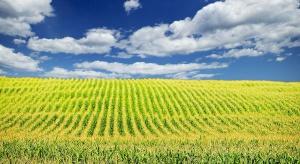 Co z ziemią rolną pod mieszkaniówkę?