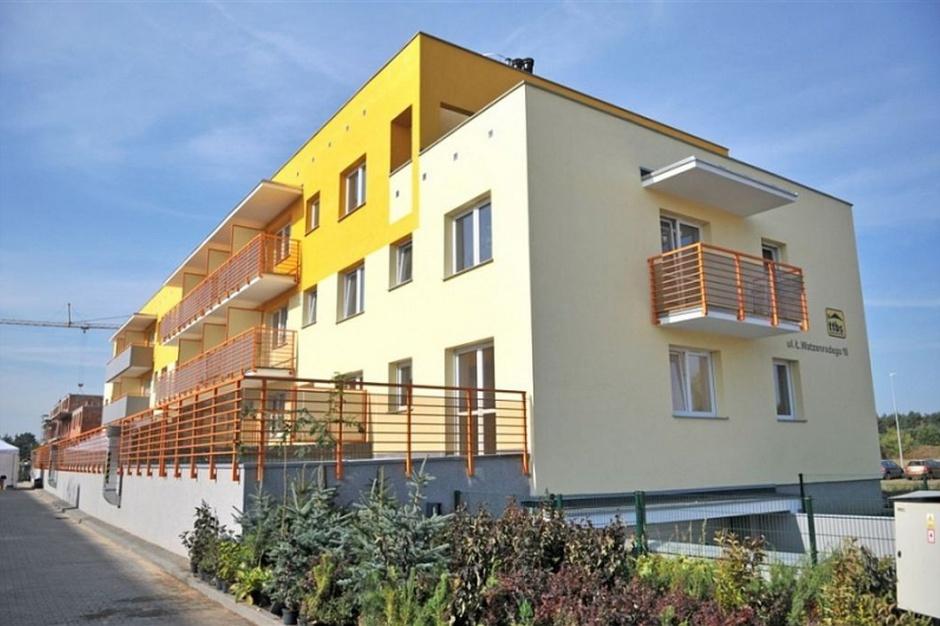 Jak stworzyć mieszkanie efektywne energetycznie?