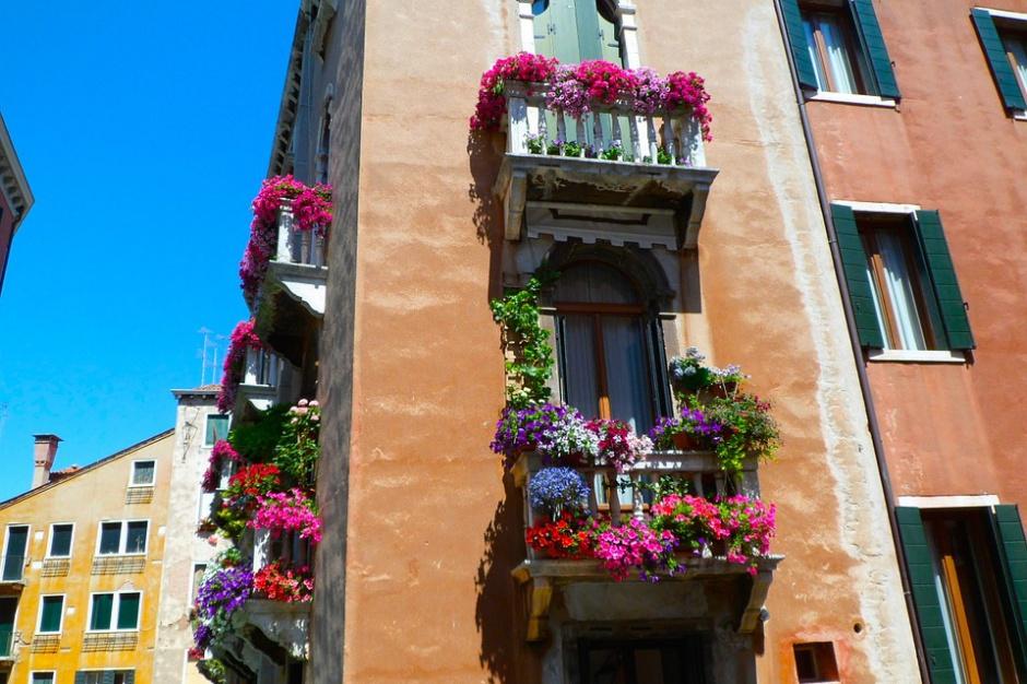 Legnica chce mieć więcej mieszkań socjalnych