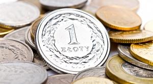 NBP: w 2020 roku wartość gotówki w obiegu wzrosła o prawie 35 procent
