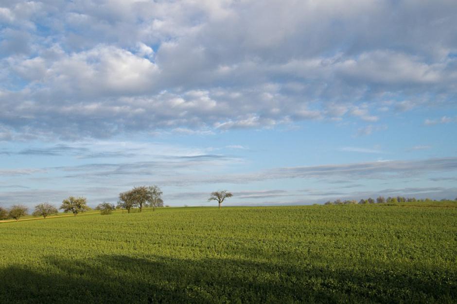 Rząd zajmie się projektem regulującym obrót ziemią