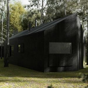 Dom między brzozami: Gra czarnego i białego drewna