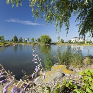Ogrody Tesoro willową oazą luksusu
