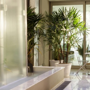 Palo Santo: Pierwszy ekologiczny hotel butikowy w Buenos Aires