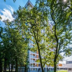Red Park na poznańskim Dębcu zakończony