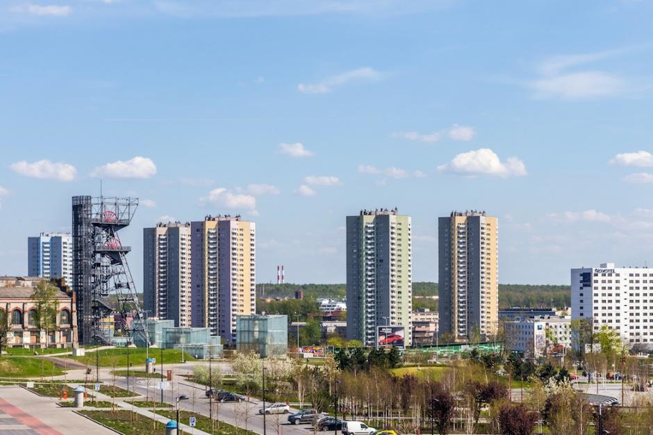 Katowice kosztem parkingów chcą zazielenić odcinek ul. Warszawskiej