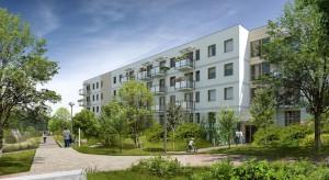 Osiedle Wolne Miasto w Gdańsku schodzi jak na pniu