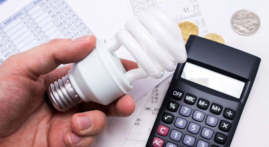 Ekspert: potrzebujemy przewagi odnawialnych źródeł energii w polskim miksie energetycznym