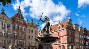 Gdańsk ogranicza koszenie traw i zakłada łąki kwietne