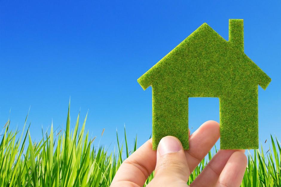 PGE chce w 2050 roku oferować 100 procent zielonej energii