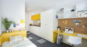 Jak wyglądają pokoje i przestrzenie wspólne wrocławskiego akademika premium?