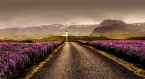 OKAM wspiera rowerową wyprawę przez Islandię