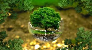 Yuniversal Development posadzi drzewa na warszawskim Ursynowie