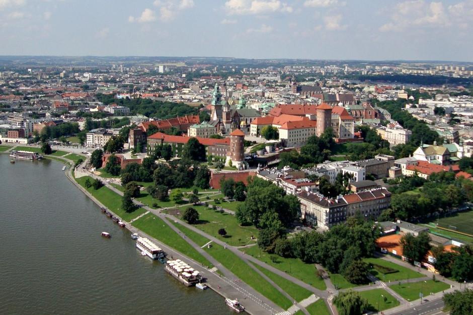 Kraków wstrzymuje sprzedaż tzw. lasku paprociowego, wartego 12,5 mln zł