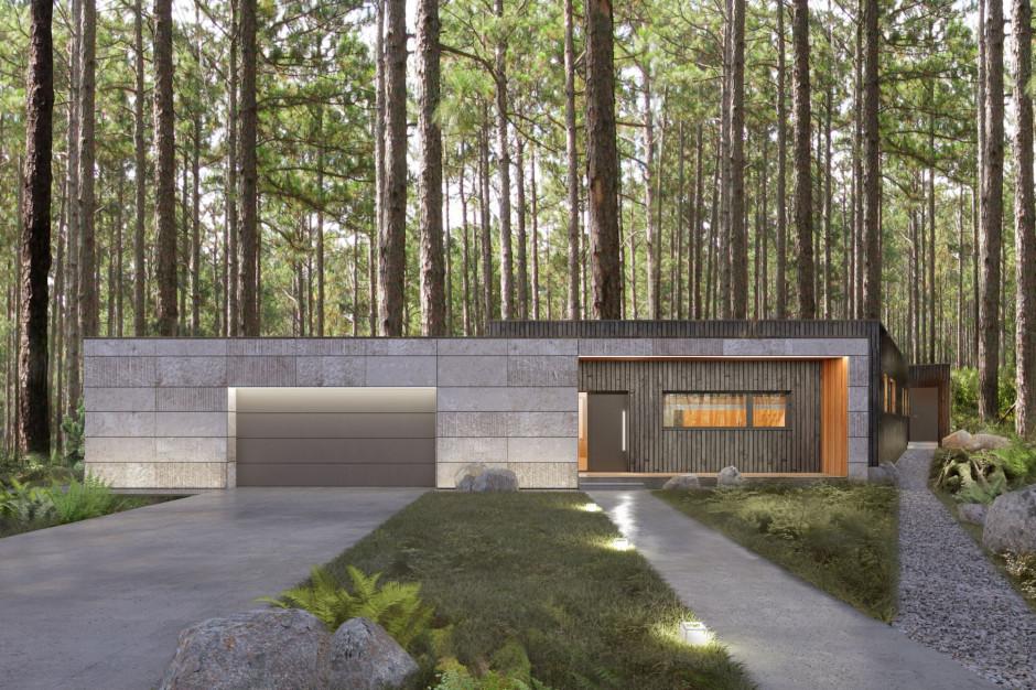 Moody-Woody House: z miłości do natury