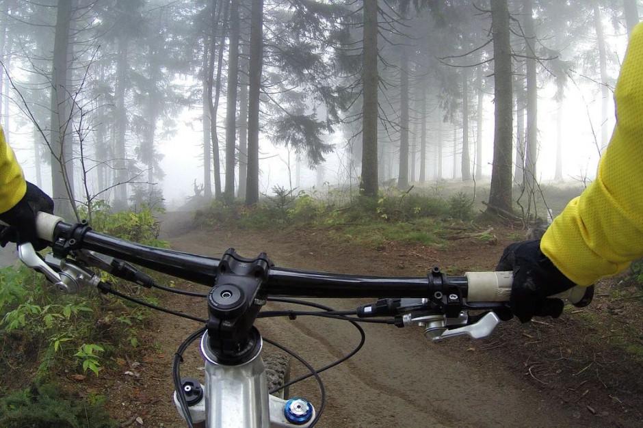 Raport: ponad 60 proc. polskich rowerzystów chce rozbudowy infrastruktury
