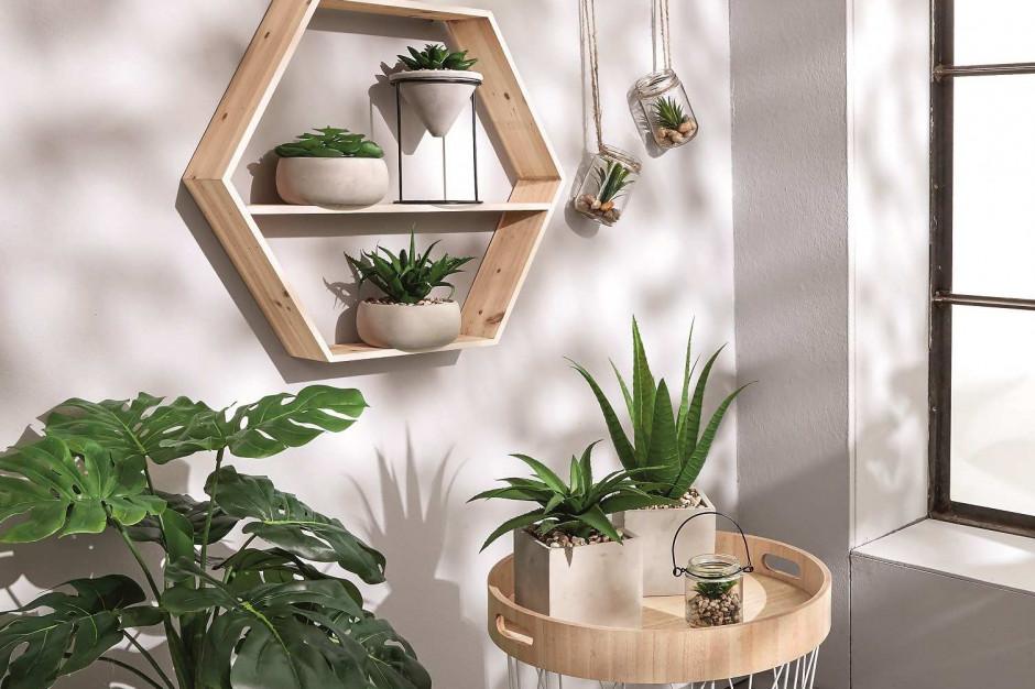 Wnętrze pełne roślin -  sposób na kontakt z naturą bez wychodzenia z domu