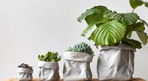 5 sposobów na wiosenną metamorfozę mieszkania