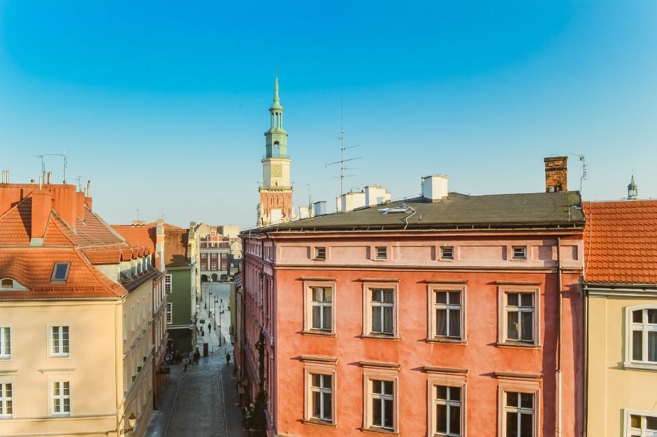 Poznań posadzi drzewa na osiedlach za frekwencję w wyborach