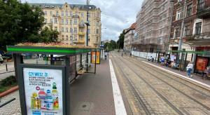 Poznańskie eko przystanki oczyszczają powietrze i chłodzą w upalne dni