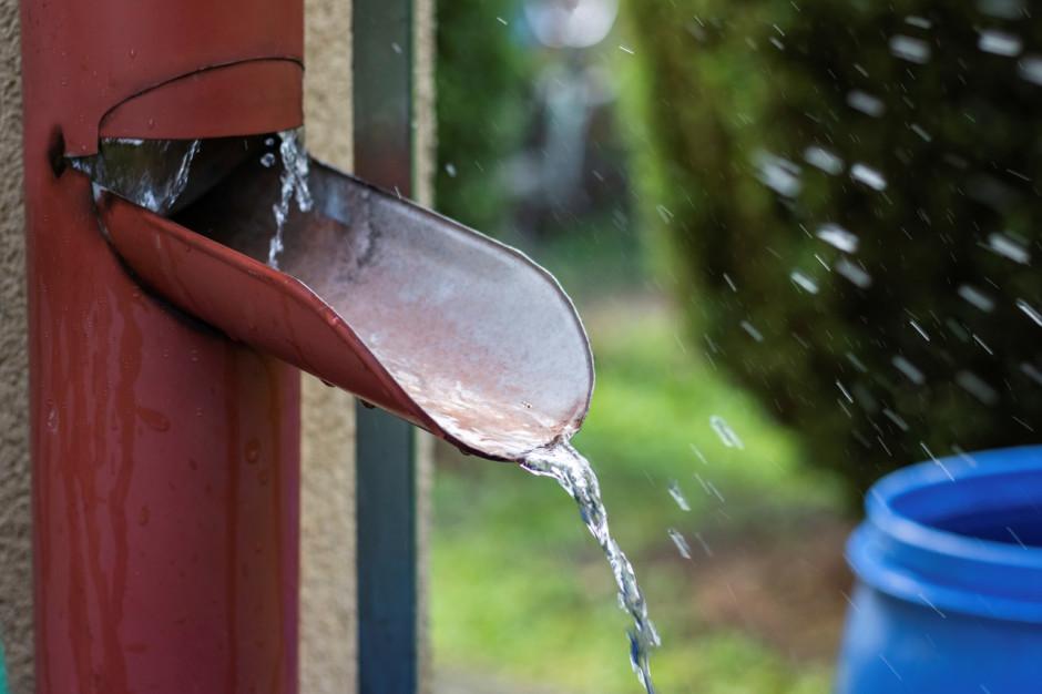 Myśl globalnie, działaj lokalnie - czyli jak skutecznie oszczędzać wodę?