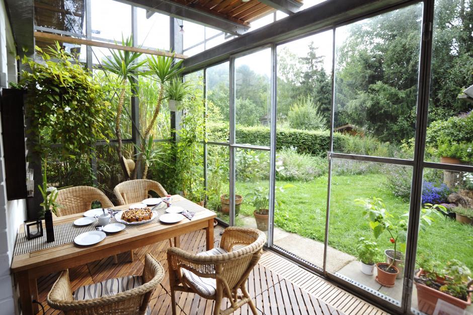 Salon z widokiem na zieleń. Mieszkanie z ogrodem zimowym