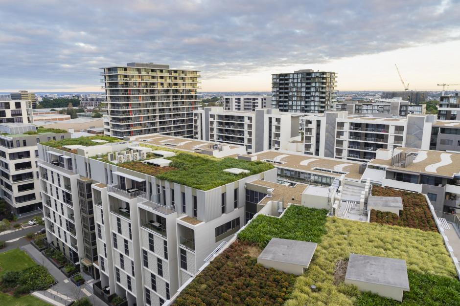 Globalna urbanizacja stymuluje rozwój zielonych technologii