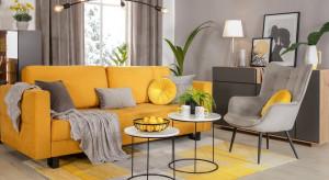 Nowoczesny minimalizm czy oryginalny pop-art? Trendy we wnętrzach w 2021 roku