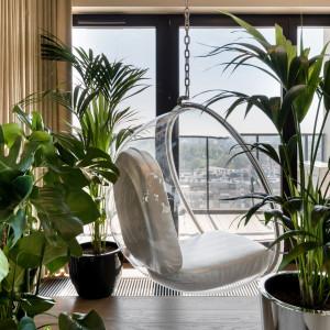 Jasny i przytulny apartament w centrum Wrocławia