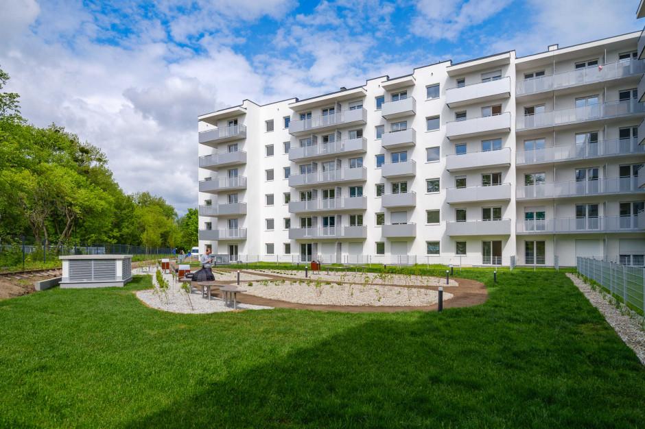 Tak dużo mieszkań nie zbudowano w Polsce od wielu lat. Boom w Wielkopolsce