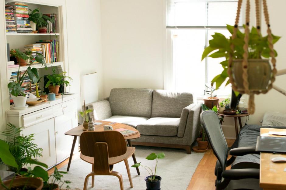 Jak optymalnie wykorzystać nasłonecznienie mieszkania?